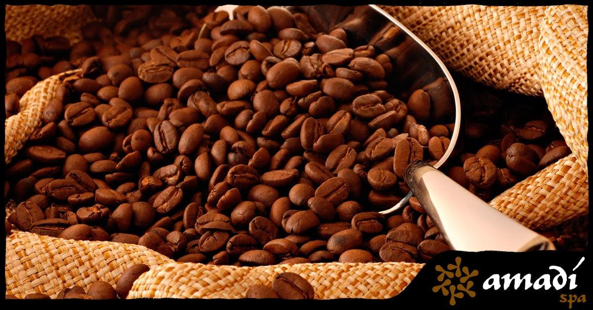 Café: saiba tudo sobre o queridinho de muitas pessoas - Amadí Spa - Moema
